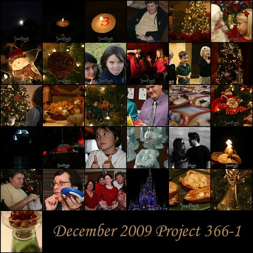Dec 09 Project 366-2