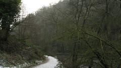 IMG_5829 (Dazzygidds) Tags: december derbyshire peakdistrict beautifullight nationaltrust peakdistrictnationalpark dovedale limestonecliffs sssi riverdove derbyshiredale famoussteppingstones