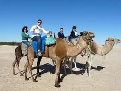 """15fedf7df632e A eso se le llaman """"licencias literarias""""). Sea como fuere allí estábamos  tan felices montados en nuestros camellos guiados por un chaval con  vocación de ..."""
