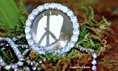 PEACE TO ALL (MY PINK SOAPBOX) Tags: love sparkles hope democracy nikon peace originalart political protest dream paz peaceful frieden zen harmony hate fred planet violence environment pax pace serene karma inspirational jewels shalom gems justitia soulful amani causes rhinestones salam justicia doves equality gayrights paix empowerment politicalart pacifist choctaw heiwa pingan barish harmonia achukma igualdad empowering pacifista femart derfrieden genderdiscrimination feministart greenmovement feministartist amniat simbolodepaz peacelogo anahidecanio deerfrieden anahidecaniofeministartist feministartistsanahidecanio empowermentforwomen