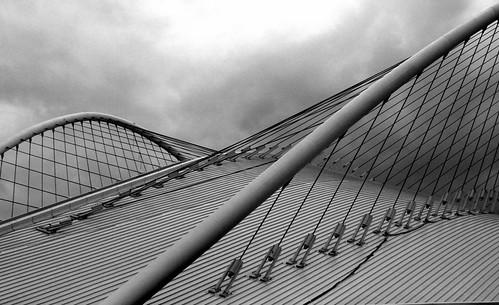 Stadium web-like structure