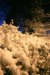(ⒷⓇⒺⓉⓉ) Tags: snow cold scenic frosty fresh firstsnow snowfall isleofman ramsey mywalktowork