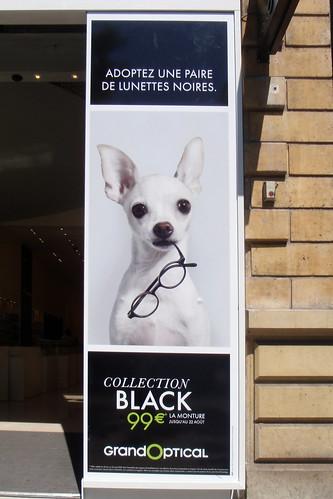 Lunettes Noires