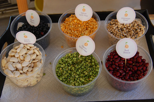 seeds/beans for the mosaic craft