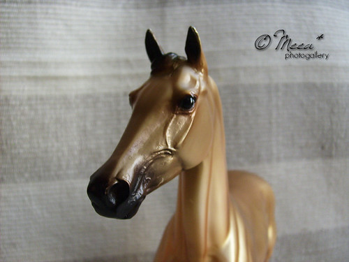 Sun Dancer (Akhal teke) - Breyer horses by Meea*.
