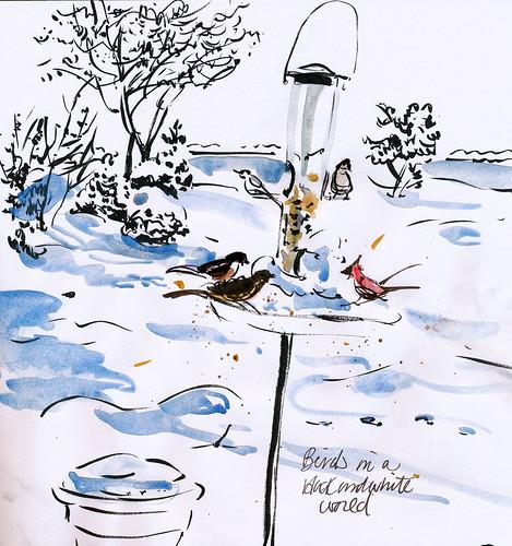 Birds feeding, snow