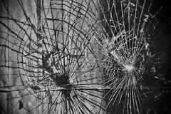 busted (damonabnormal) Tags: street city urban blackandwhite bw philadelphia broken nikon shadows brokenglass streetphotography pa philly cracks february shattered busted phl cracked brokenwindow 2010 215 d90