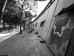 Barcelona 47 (Andy WXx2009) Tags: barcelona street city urban blackandwhite abstract tree monochrome wall archit