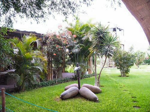 Garden at Ica Airport
