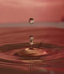water droplets (steffi's) Tags: macro droplets wasser drop waterdroplets wassertropfen tropfen
