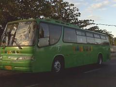 Farinas Trans 87 (leszee) Tags: bus trans 87 bantay ilocossur nationalroad farinas farinastrans bulagcentro daewooroyalcruistar