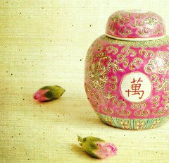 Little Chinese Dish (vesna1962) Tags: pink stilllife green home dish chinese textures buds legacy lid carnations coth homeshots pareeerica artistictreasurechest miasbest skeletalmess magicunicornverybest selectbestfavorites