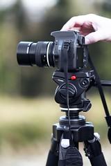 canon 5DMkII 85mm f1.8 lens
