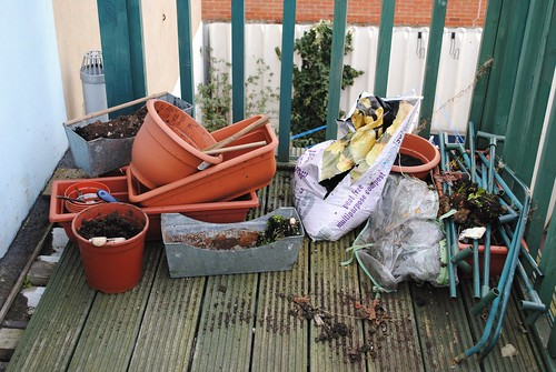 gardening 03.03.10