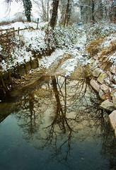 Il riflesso e la neve (Claudio61 una foto ferma un ricordo nel tempo) Tags: alberi canon ticino natura neve reflexions riflessi freddo paesaggio ayala canale ohhh scorcio vigevano lomellina flickraward