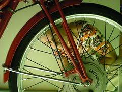 raggi (OldGuz) Tags: portrait italy wheel italia emilia bologna motorcycle rays ducati ritratti raggi ruota motocicletta museoducati mygearandmepremium oldguz 4timesasnice 6timesasnice 5timesasnice 7timesasnice