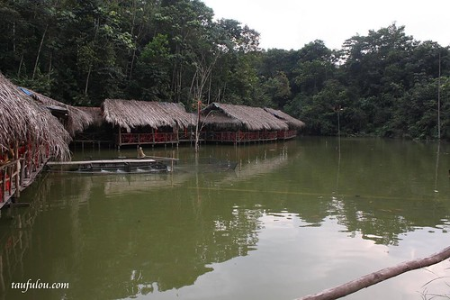 Vegie Fish Farm (3)