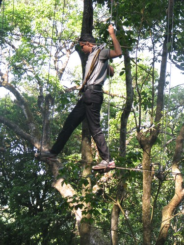 Rope_Challenge_Course_Swinging_Log_Walk