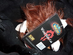 Unpacking 5: In the Bag (eisfaerie) Tags: wow warcraft horde windrider