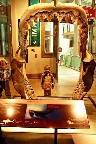 dc museums 017