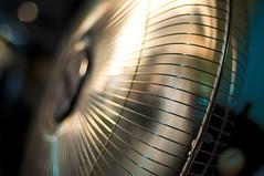 Bentilador (michaeljosh) Tags: fan stainlesssteel bokeh newyorktimes ventilador goldenlight grills electricfan nikkor50mmf14d summerheat project365 nikond90 ronrezek bentilador modernfancompany michaeljosh