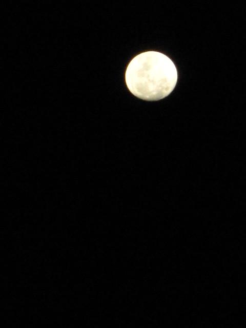 IMG_1059 Moon  ,  明月几时有