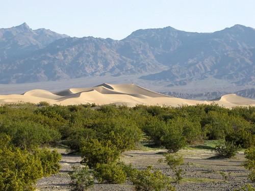 Mesquite Flat Dunes-4
