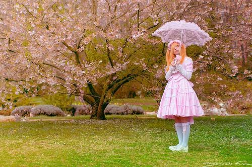 Alice au pays des arbres roses