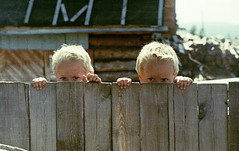 Brothers (original) (Andrew'xa) Tags: trip travel people color cute film kids 35mm fence children twins asia europe fuji village russia grain july siberia m42 100 analogue fotografia f56 russian plot 56 zenith pot syberia 442 dzieci skaner 7200   rosja  zenitet zdjecie skan helios44    wie russianlens plustek wioska  zdjcie zenithet     ziarno opticfilm  klisza  442 44 analogowe bliniacy   opticfilm7200plustek  zeskanowane
