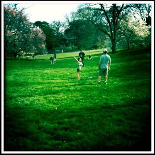 baseball-family-iambossy