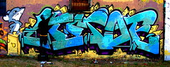 LIMOE (AlwaysErect2007) Tags: graffiti action ae lim limoe syw