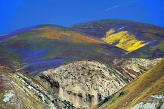 Carrizo Plain National Monument (peace-on-earth.org) Tags: california road wild usa flower unitedstates range plain elkhorn carrizo temblor peaceonearthorg