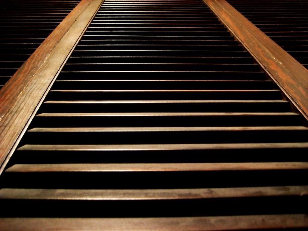 2010-04-11 wood 023