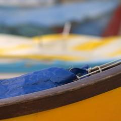 wooden ships (<gassa>) Tags: ships jeffersonairplane gassa veterinarifotografi