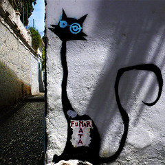 Fumar mata...Hi,Here I am ;) (fifich@t / Franise / off) Tags: selfportrait streetart cat graffiti spain avatar andalucia granada andalusia grenade espagne buddyicon lr andalousie selfie andalou albacin smokekills fumertue squarepicture formatcarr panasonicdmclx2 squarephotography featuredfrontpagewinners streetartcats digimarc2011 fifichat1 winnerudo frs squarefotografiasparaenmarcar1004 fificht frs