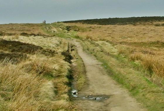 Ilkley Moor Walk