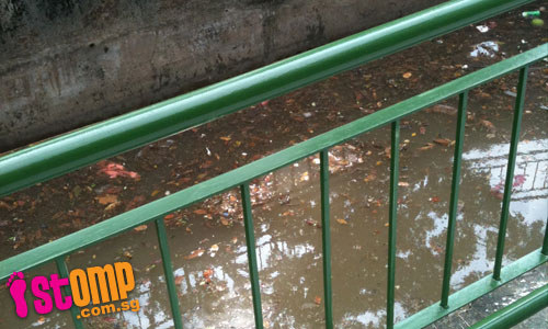 'Dirty S'poreans' throw litter into canal