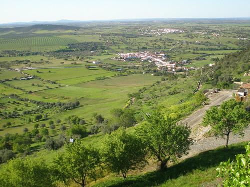 Degustar vinos portugueses
