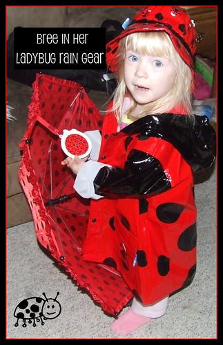 ladybugbree