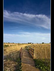 In harmony (Melkor13 ON/OFF) Tags: bridge sky naturaleza canon landscape puente eos path paisaje cielo marsh 450 18200 sendero sagunto puzol marjal 450d mywinners melkor13