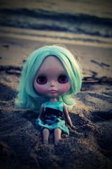 meadow loves the beach