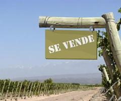 Crecen las ventas de fincas en Luján y el Valle de Uco
