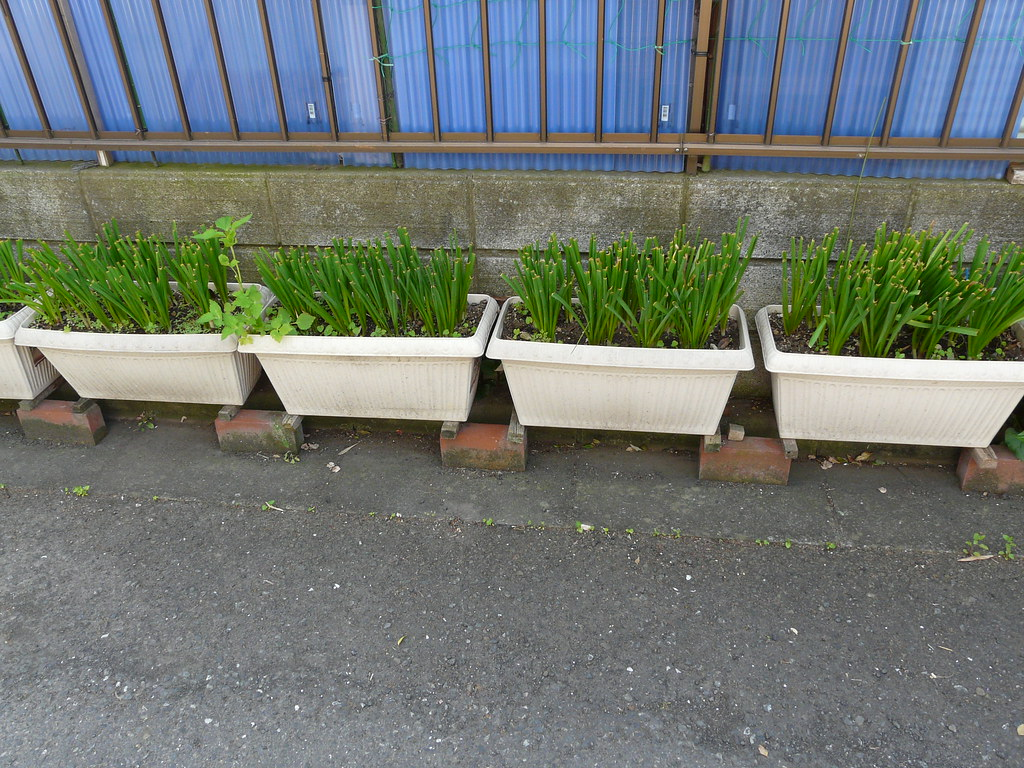 Curbside Planter Support