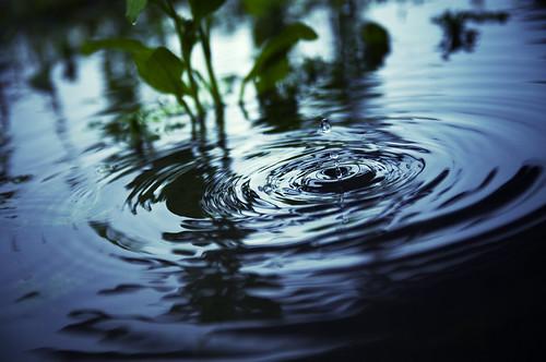 フリー写真素材, テクスチャ・背景, 水・氷, 波紋, 雫・水滴,