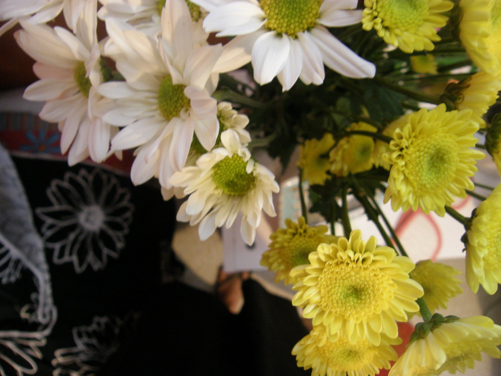 vase full of daisies.