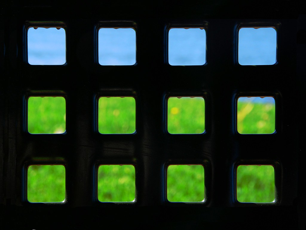 A grid of blue and green squares.