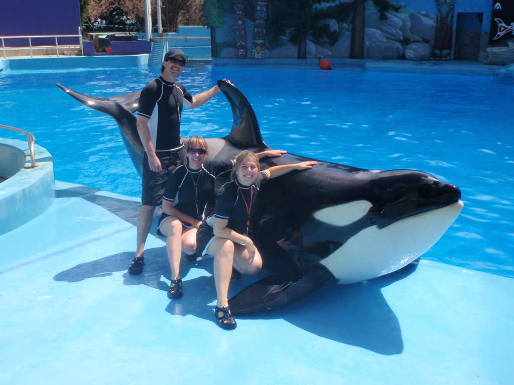 Six Flags Discovery Team - Killer Whale