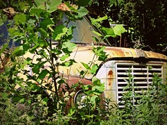 West Virginia ~ MIddlebourne (erjkprunczk) Tags: abandoned rural truck tyler international forgotten westvirginia roadside middlebourne erjkprunczyk wv18