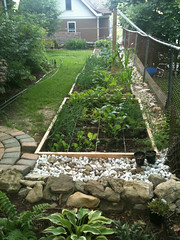 Seven splendid raised beds for Square Foot Gardening (Aimka) Tags: gardening vegetable edible may10 raisedbed squarefootgarden nom sfg garden10