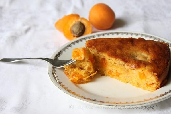 torta d'albicocche